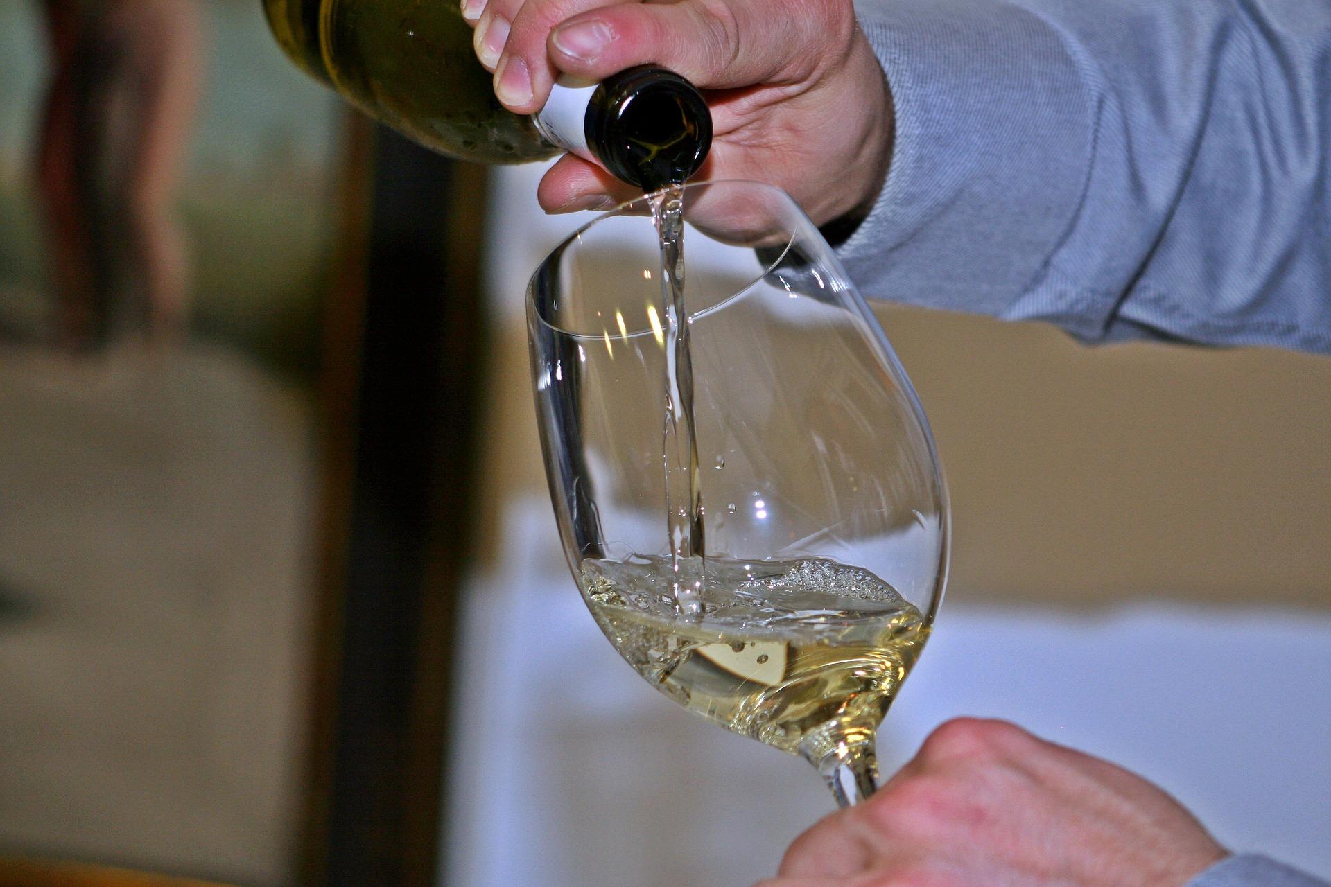 saturday wine tasting foxcroft wine co