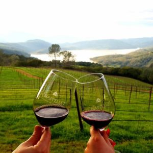 Chappelet Wine Dinner at Foxcroft Wine Co